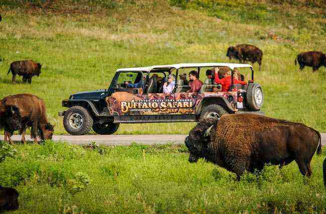 10 Best Safaris In The US Fodors Travel Guide