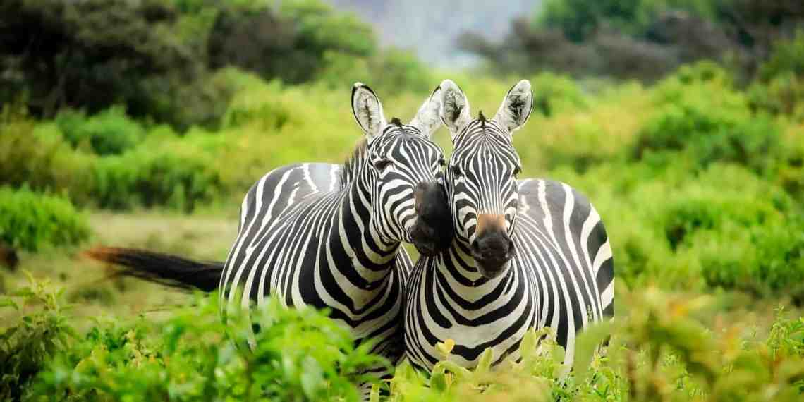 Romantic Holiday Destinations in East Africa