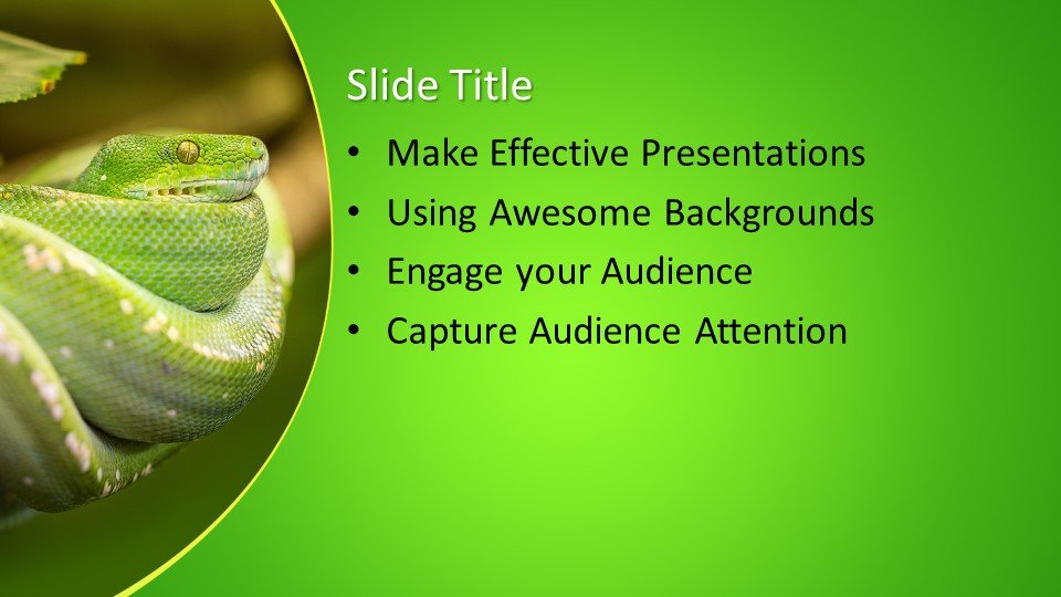 Free Snake Powerpoint Template Free Powerpoint Templates