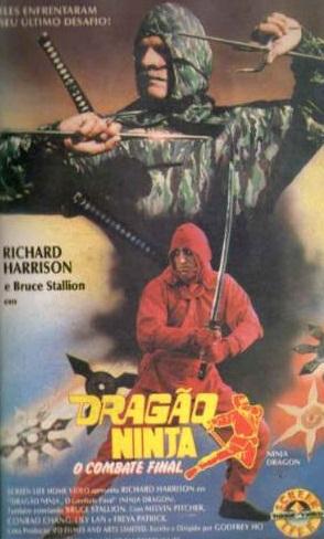 Poster do filme Dragão Ninja - O Combate Final