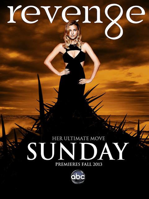 Poster do filme Revenge: O Primeiro Capitulo