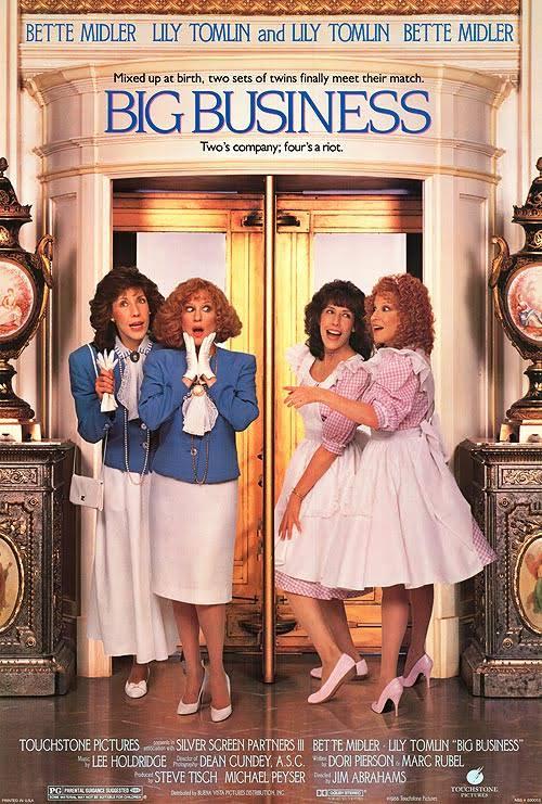 Poster do filme Cuidado com as gêmeas