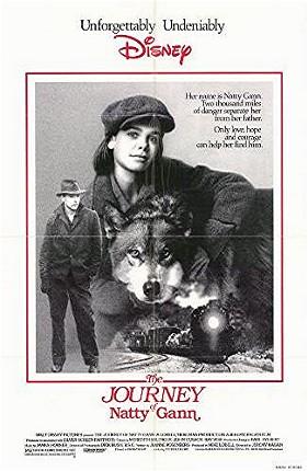 Poster do filme Viagem Clandestina