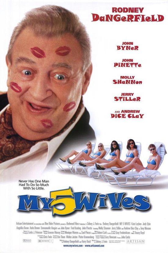 Poster do filme Minhas Cinco Esposas
