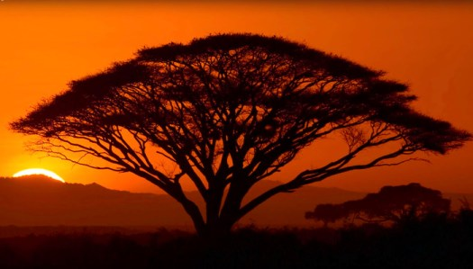 Ten Tips for Capturing Stunning Sunset Photos