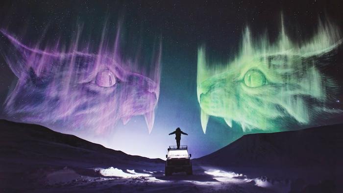 Artists Create Giant Aurora Alien Cats