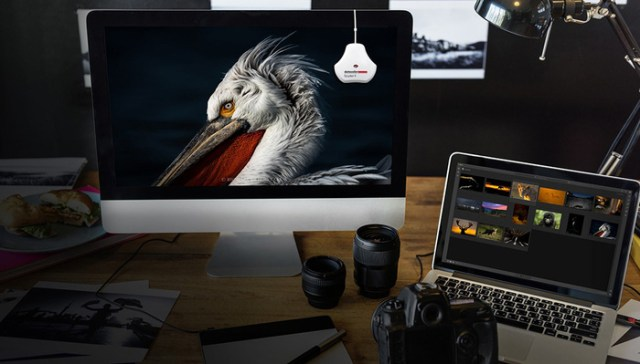 Datacolor Releases Faster, More Accurate SpyderX Monitor Calibration Tool