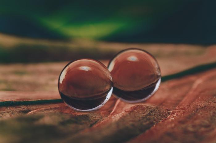 Creative Macro Photography With Water Balls