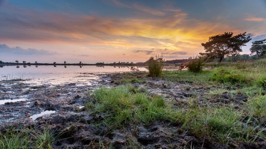 Use an Interesting Foreground for Your Landscape Photo