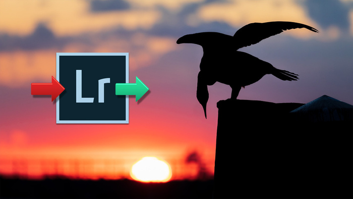 Lightroom Import and Export Tips and Tricks