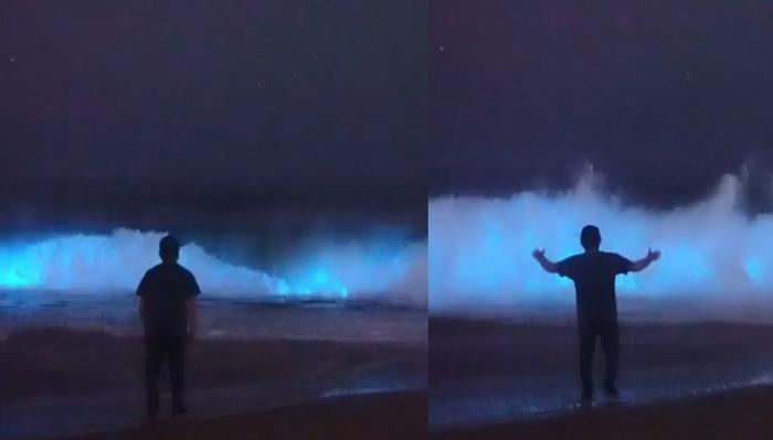 Photographer Captures Footage of Bright Luminescent Waves Sensation