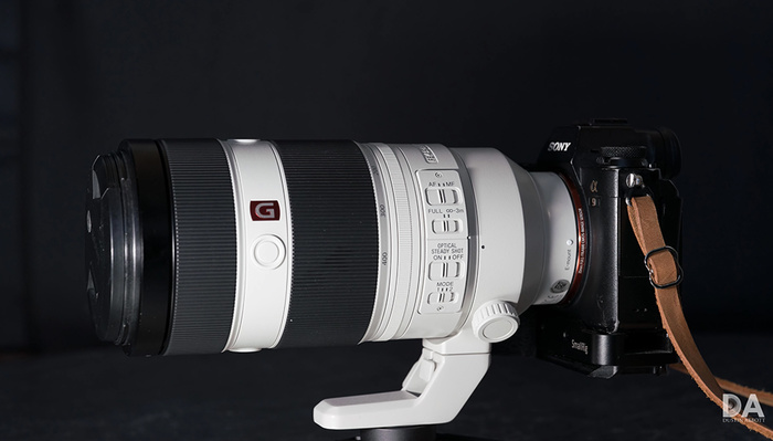 A Review of the Sony FE 100-400mm f/4.5-5.6 GM OSS Lens