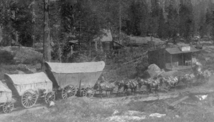 A Full Team on the Sierras: Images From 1866