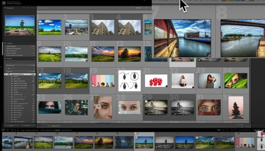 How to Find Your Photos in Lightroom