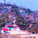 अर्मलाको घना बन क्षेत्र संरक्षण गर्न दुई छुट्टा–छुट्टै उपभोक्ता समिति गठन