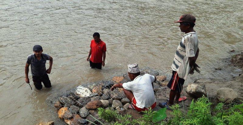 विपी स्मृति दिवशका अवसरमा बृक्षरोपण एवम् नदी कटान नियन्त्रण