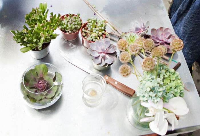 From Cupcakes And Cashmere To Backyard Bouquets