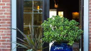 Enchanted Garden: Whimsy And Wit At Palihouse In Santa