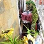 Sabi S French Cafe Water Garden Gardenista