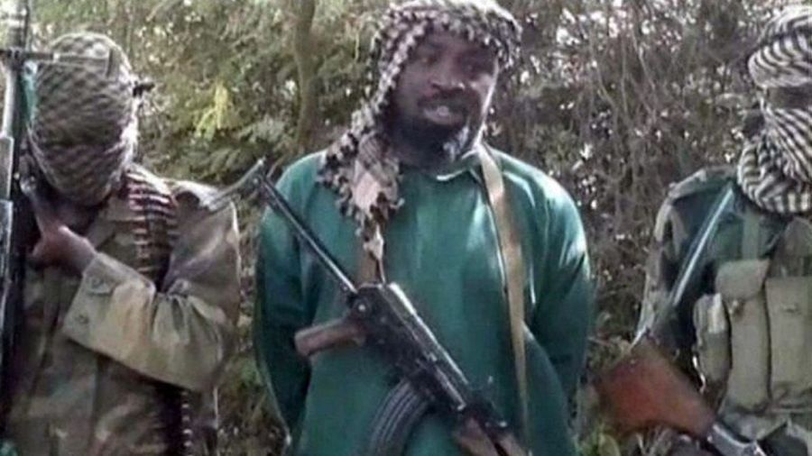 Boko Haram. (AFP)