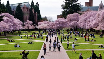 UW tops list of most influential schools in tech