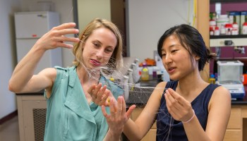 UW lands $16M to develop implantable devices that fix paralyzed limbs