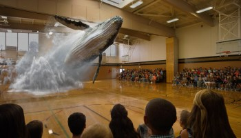 Alibaba leads Magic Leap's new $793.5M funding round at $4.5 billion valuation