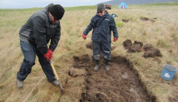 Excavation at Point Rosee