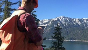 How mobile tech is helping environmental advocates preserve forests