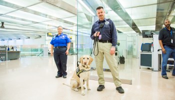 TSA airport security team