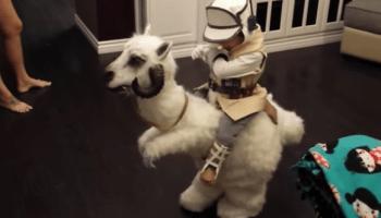 YouTube Luke Skywalker costume