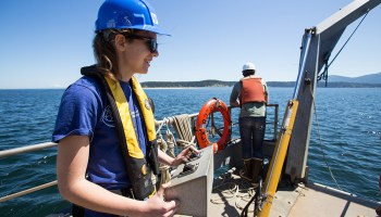 Researchers spy on marine energy machines using data analysis and a raft packed with ocean monitors