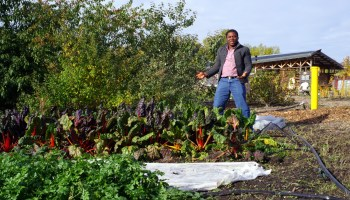 A $100K prize and a step closer to building the 'Facebook' of organic farming in Africa