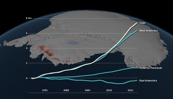 Antarctic ice loss contribution to global sea level