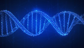 University of Washington spinout raises $1.2M for next-generation RNA sequencing technology