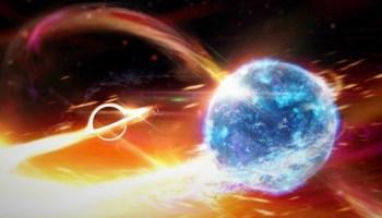Black hole and neutron star