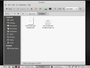 Dropbox drops any file system but ext4 on Linux