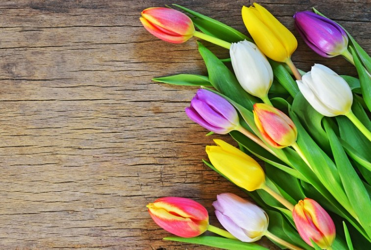 6 Tips for Buying Cheap Mother s Day Flowers   GOBankingRates
