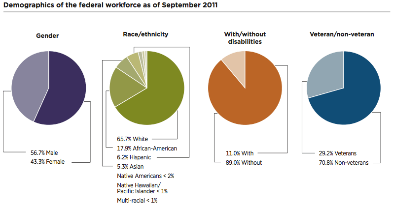 Image result for Federal workforce demographics