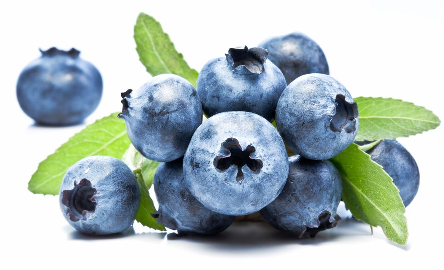 Wild Blueberry Polyphenols Improve Vascular Function