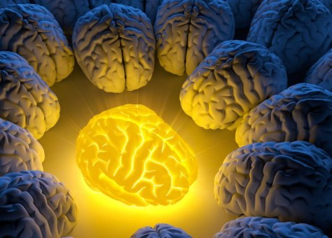 How Whole Turmeric Heals The Damaged Brain