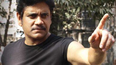 Nagarjuna Wants To Stop Experimental Films?