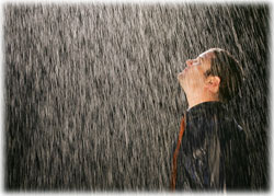 What to Do When It Rains on Your Search Engine Rankings