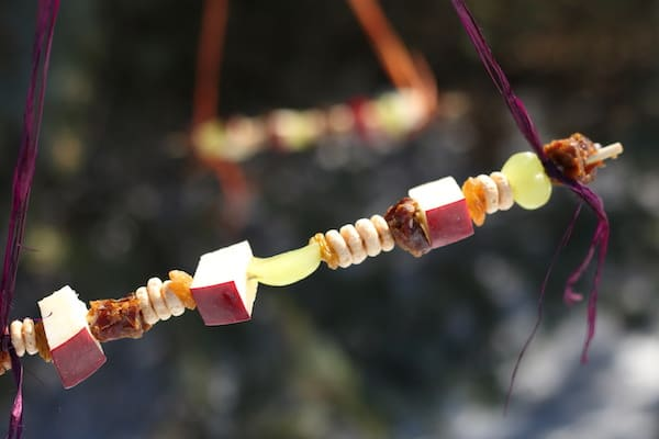 horizontal close up fruit/cheerio feeder
