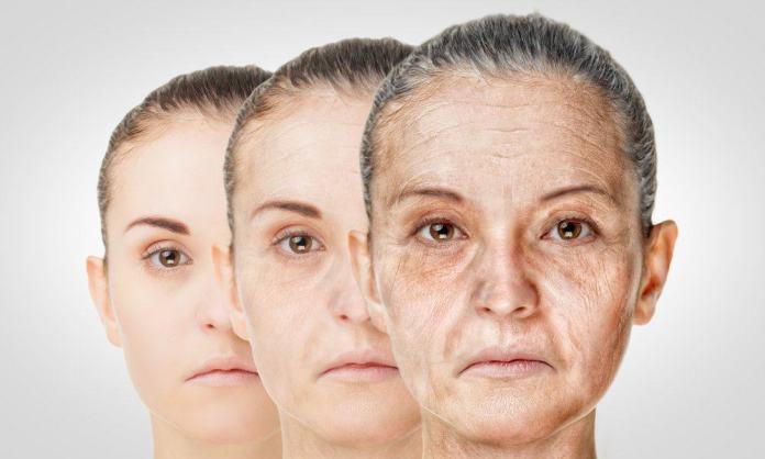 Image result for kulit keriput