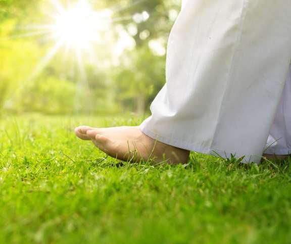 मेडिटेशन वॉकिंग क्विज - Quiz Meditation Walk