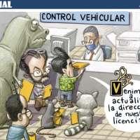 Licencia para prevenir