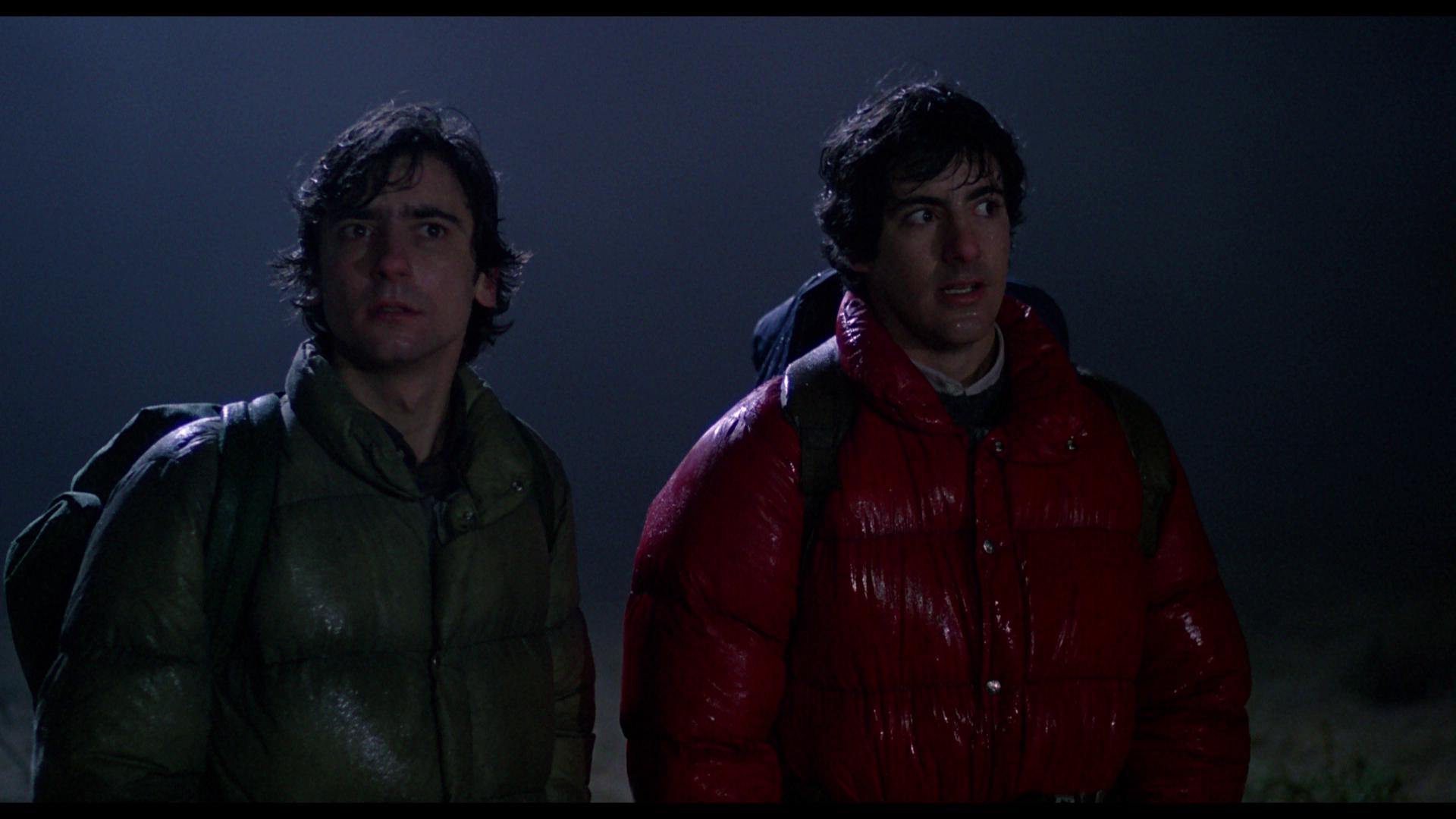 Image result for american werewolf in london