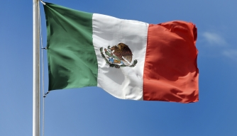Image result for southern mexico flag