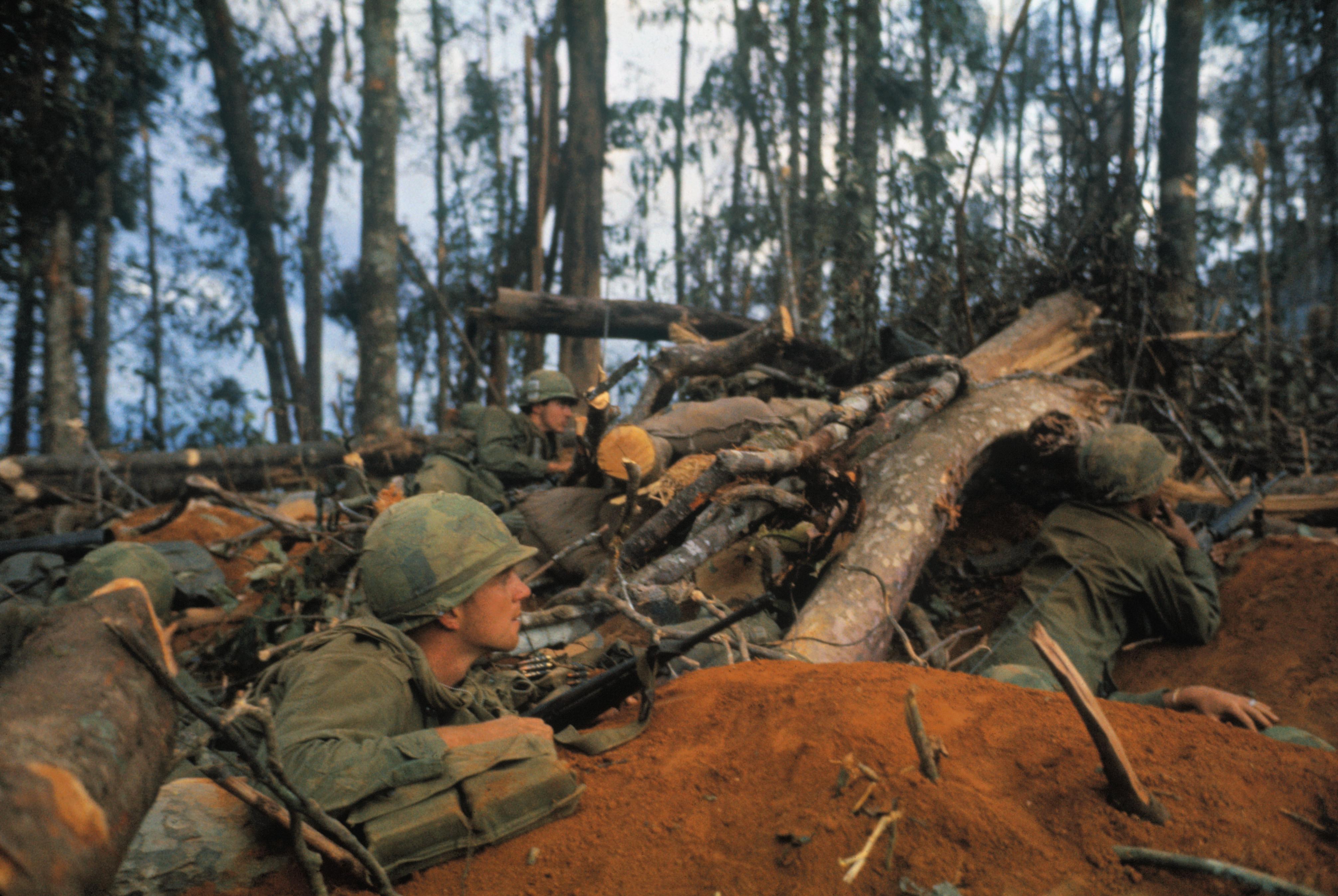 Vietnam War Tet Offensive Pictures